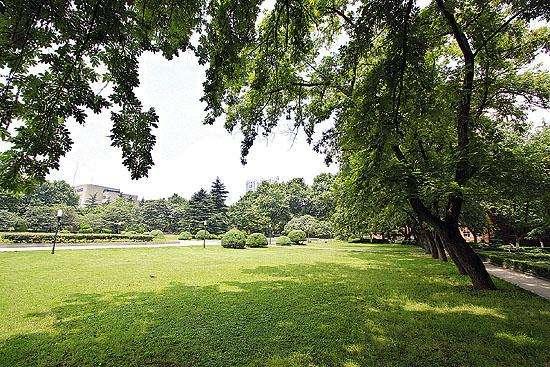郭沫若广场:东侧草坪